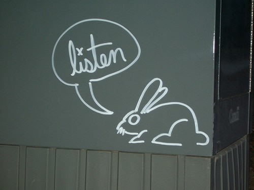 conejo-enano-comunicacion